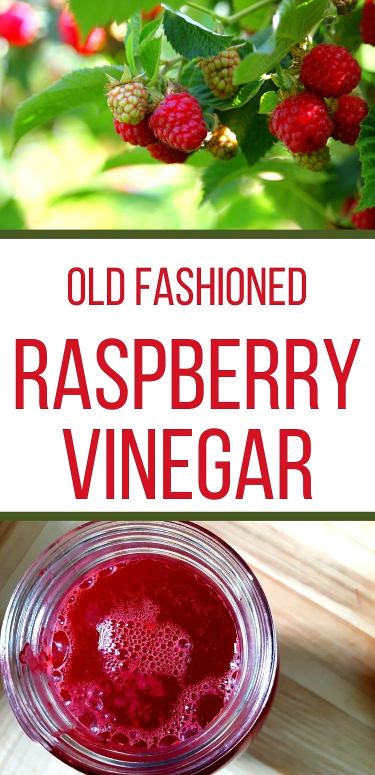 Make this diy red raspberry vinegar recipe at home!