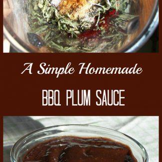 BBQ Plum Sauce