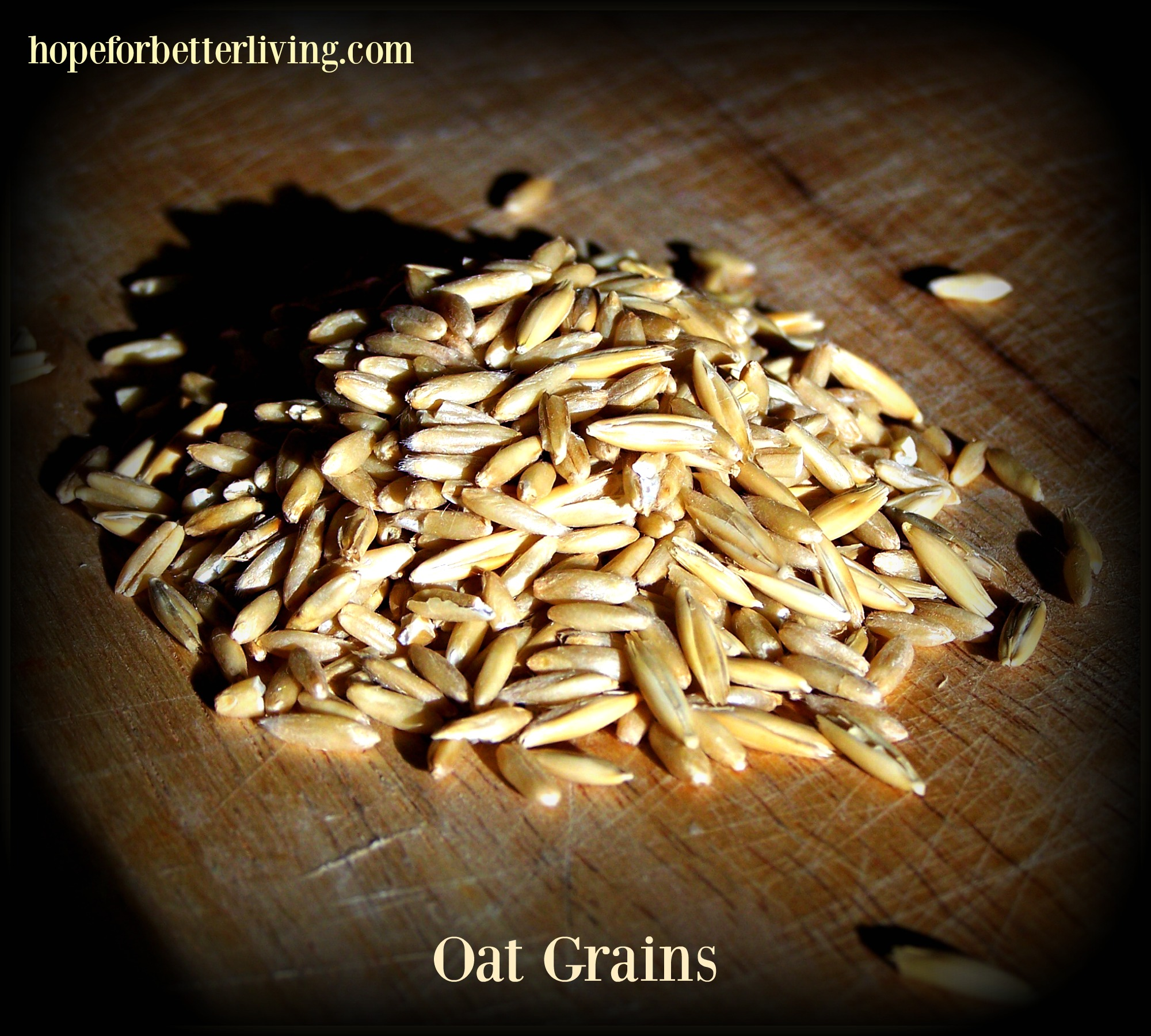 Rolling oats in your kitchen is a frugal way to add more nutrition to the kitchen!