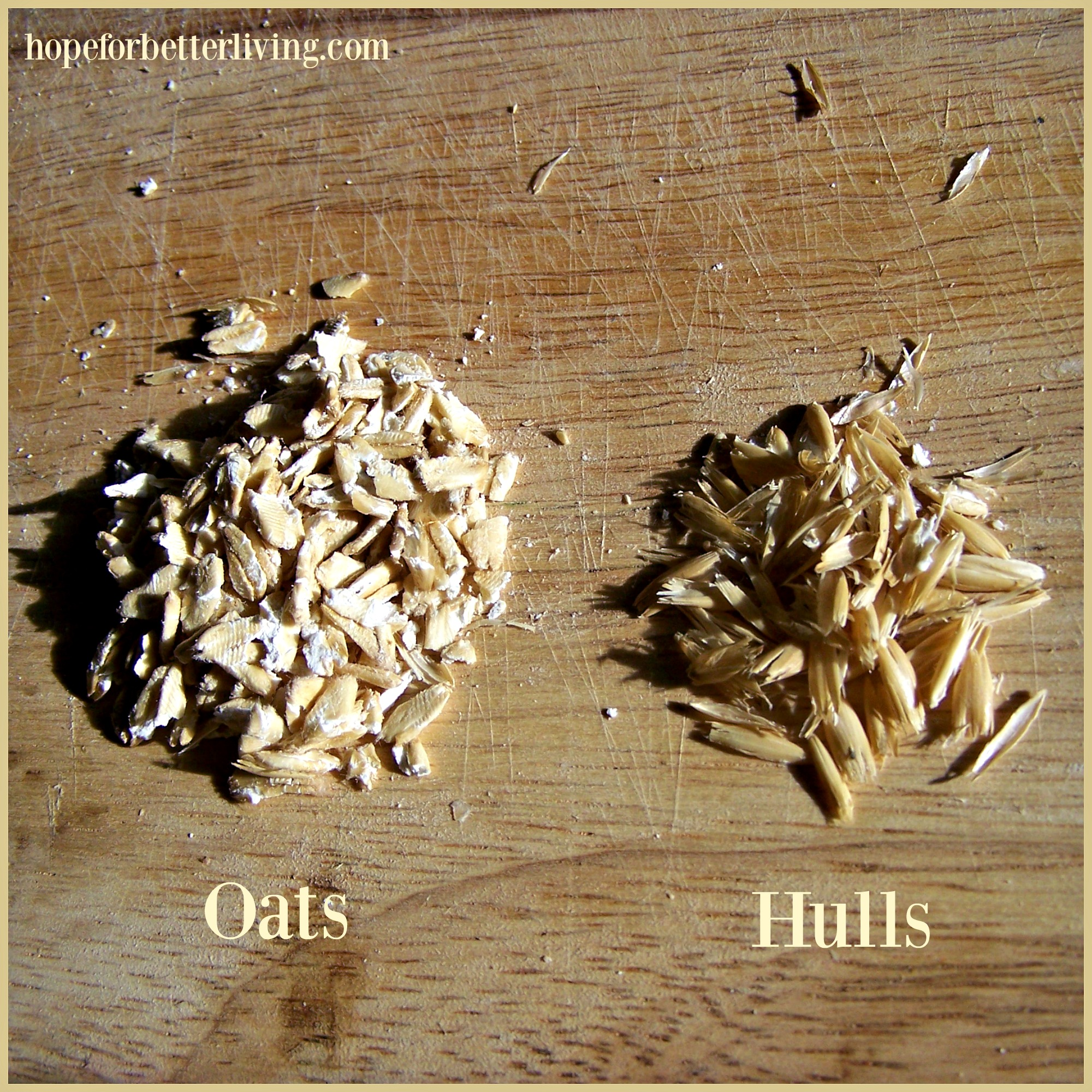Oat and hulls