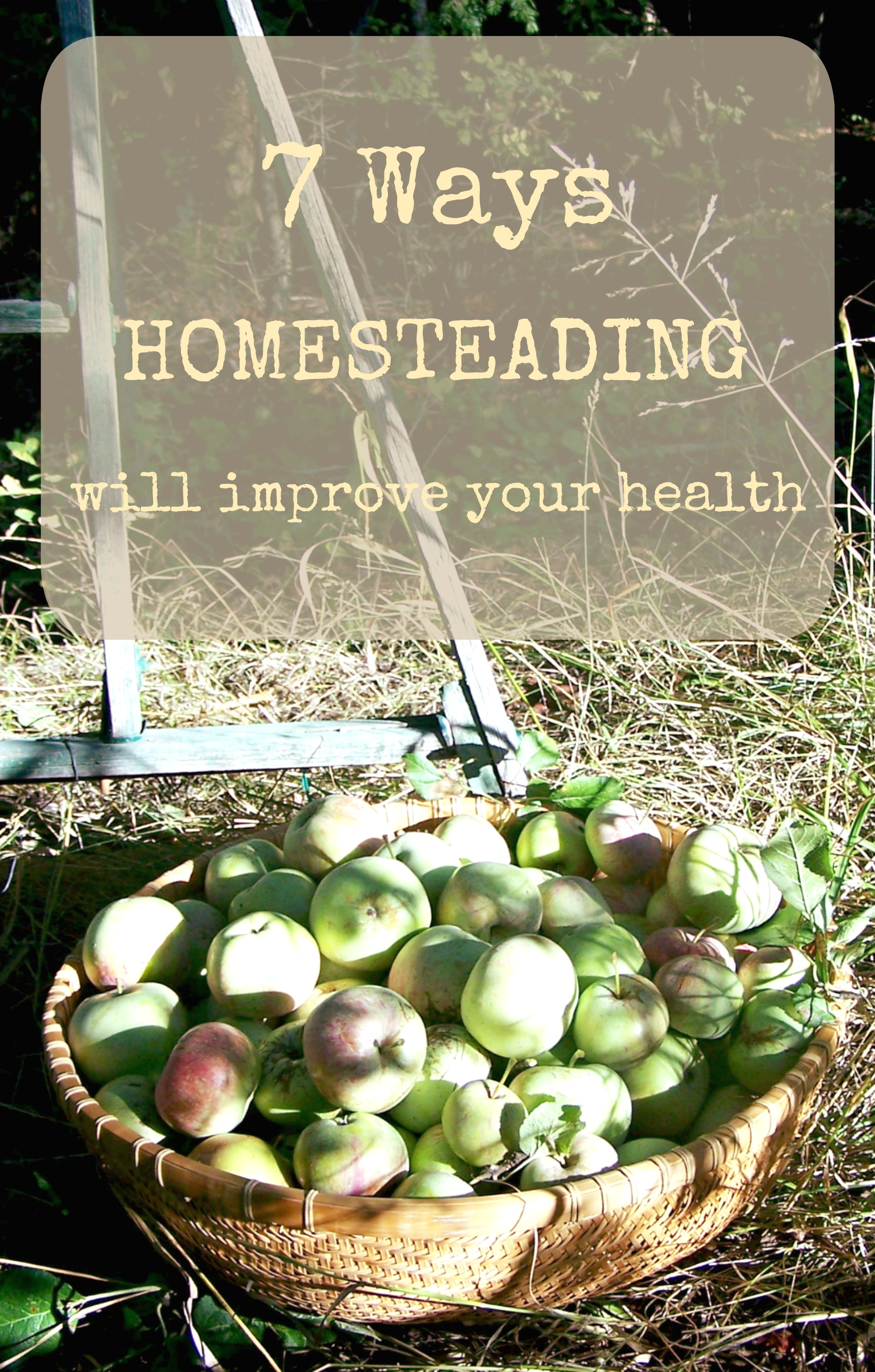 Are you experiencing symptoms that alarm you? Homesteading offers change in many areas of life! Come learn about 7 benfits and reasons to return to natural living!