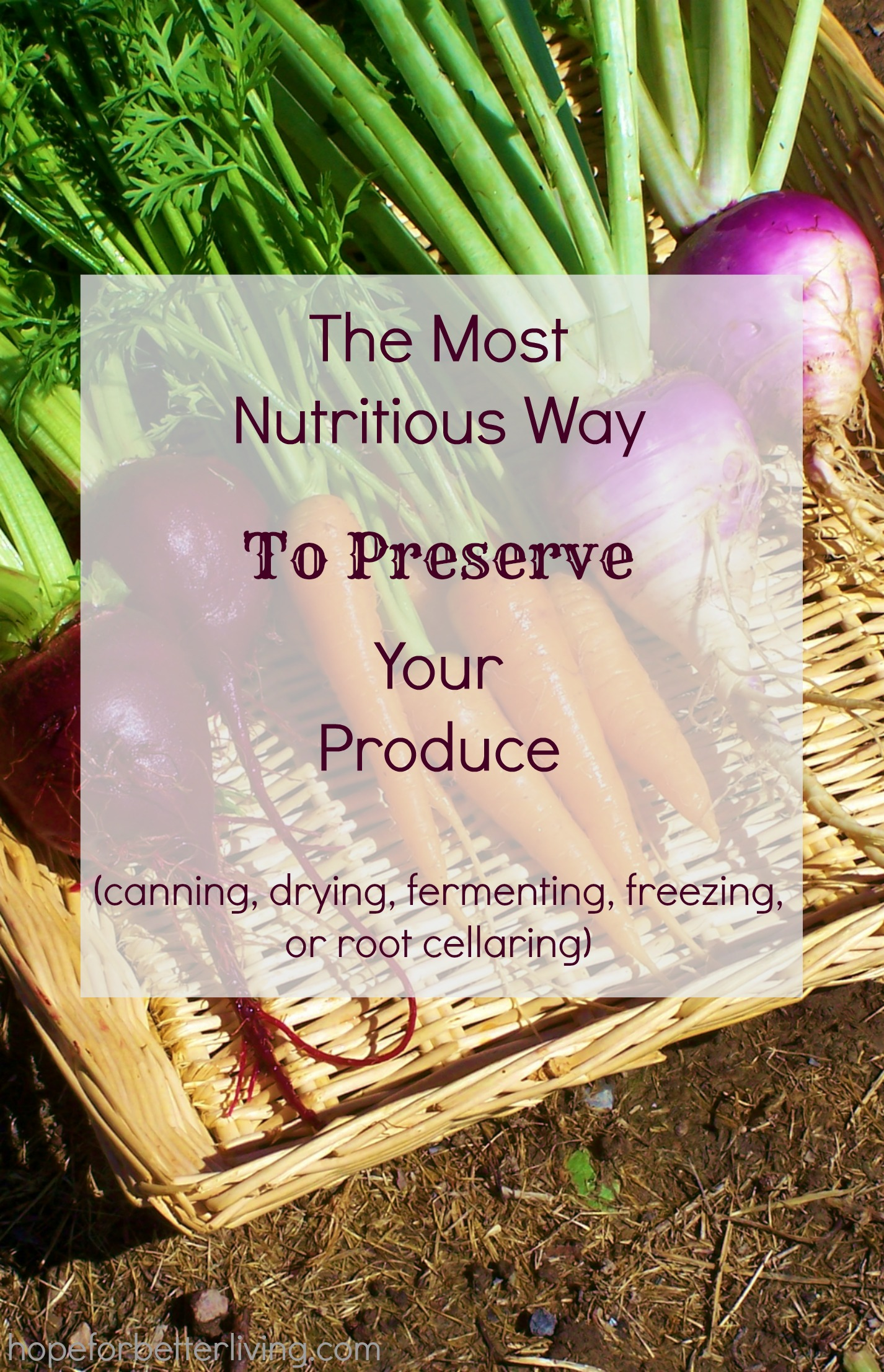 Learn how to preserve for nutrition!