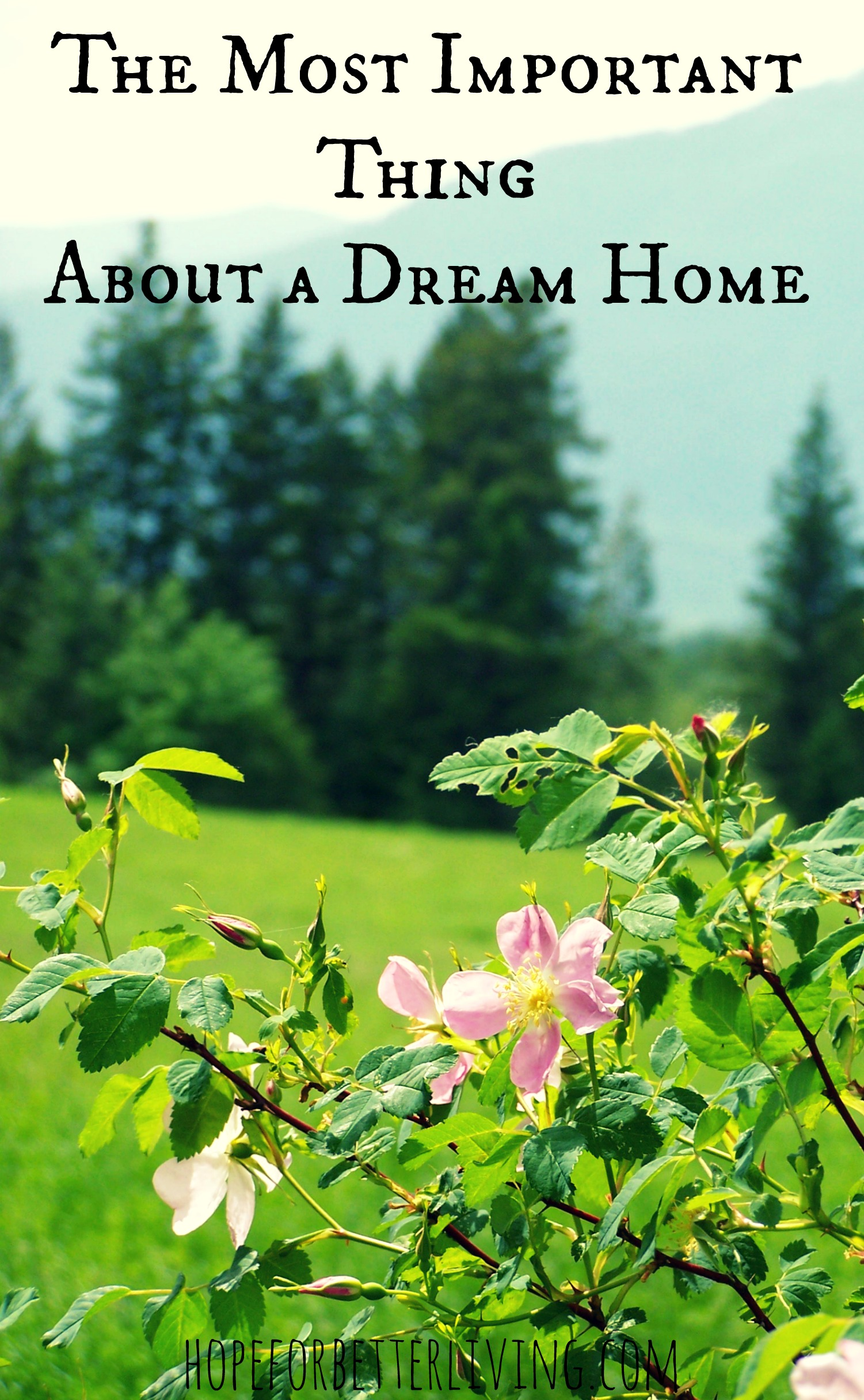 A Dream Home: What is Most Important?