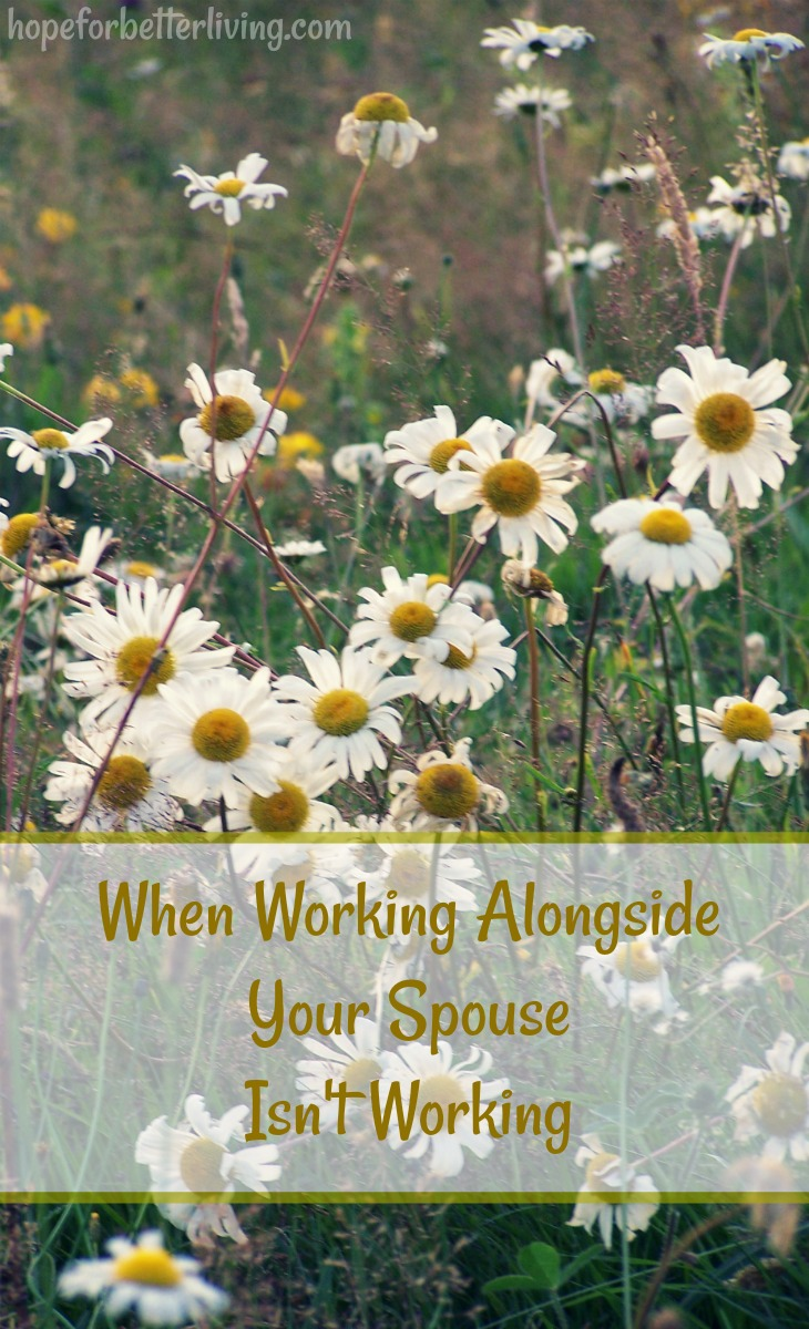 Do you have a difficult time working with your spouse? Read of our struggles and victories!