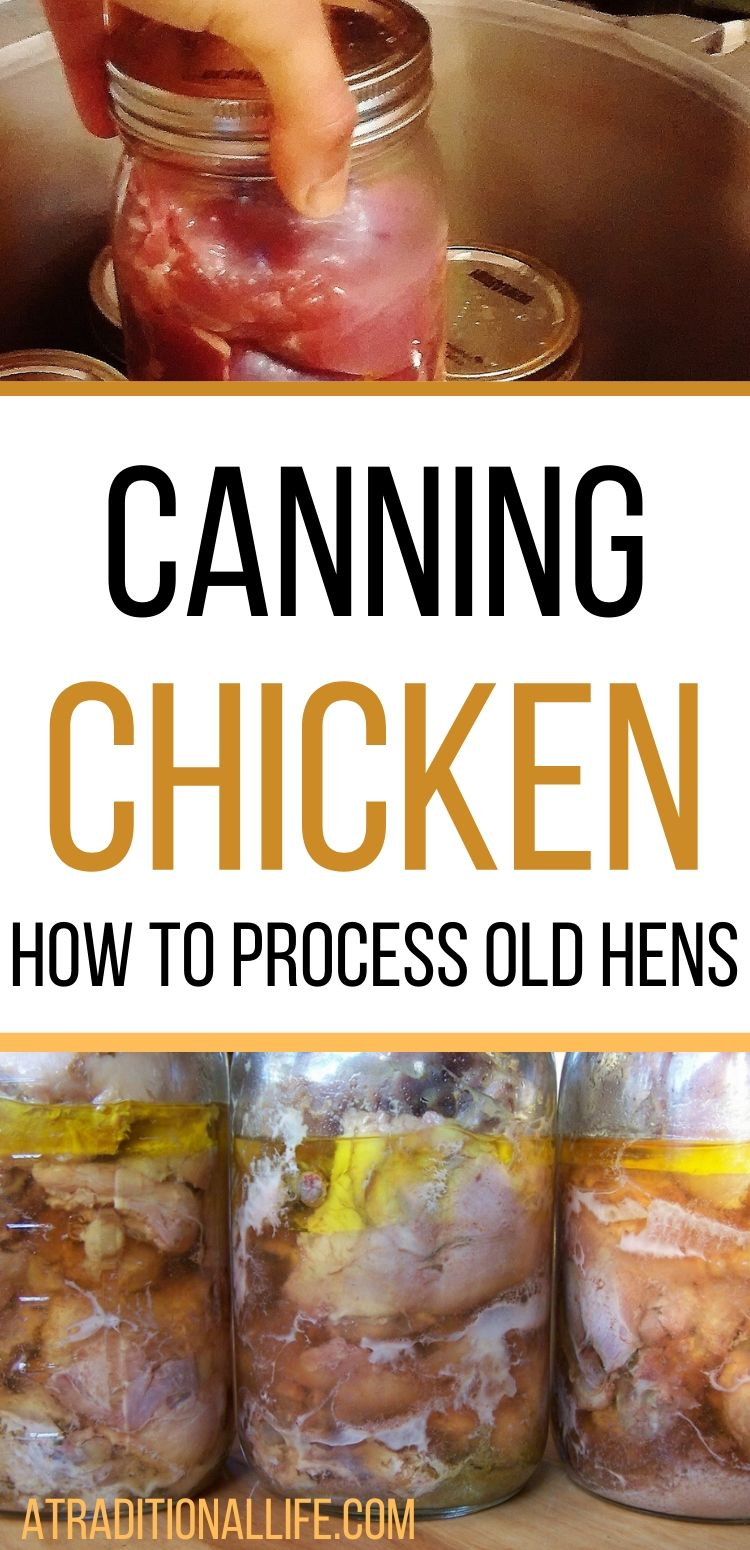 Recipes for pressure canning chicken!