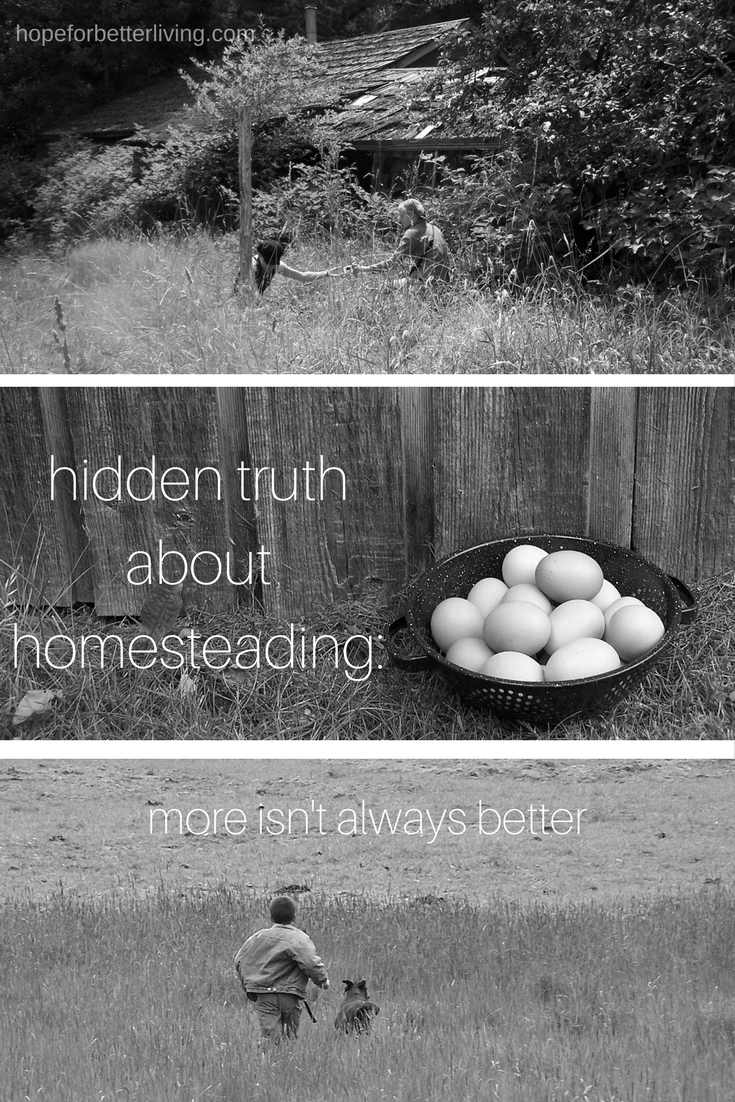 Struggling to add more to your homesteading lifestyle? Consider this before you add anything else to your schedule!