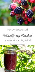 A wonderful recipe when you have a surplus of blackberries!
