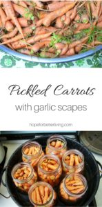 Canning pickled carrots is simple. Use your garden thinning with garlic scapes for a delicious side dish!