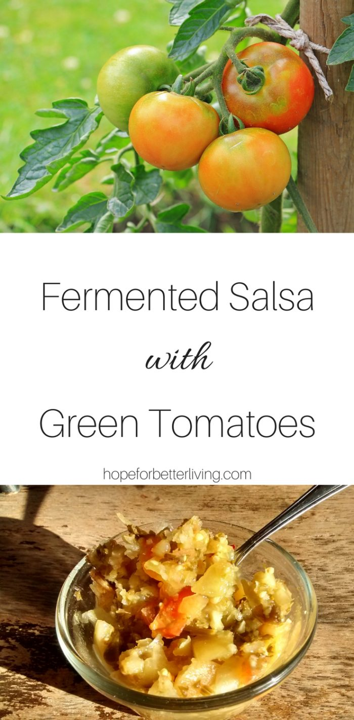 A wonderful recipe for those who have an access of green tomatoes!