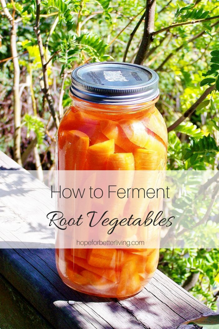 Learn how to ferment root vegetables for a ready-to-go snack!