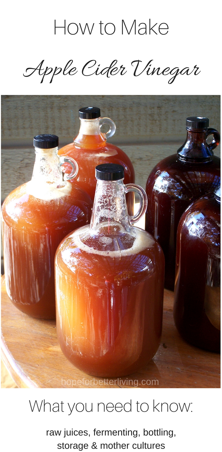 Make your own apple cider vinegar at home!