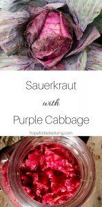 Use your purple cabbage to make this delicious sauerkraut recipe!