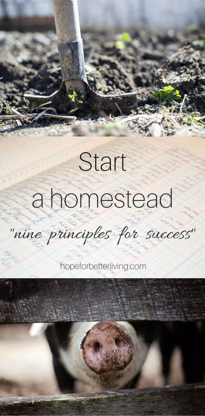 Hoping to start a homestead? Here are 9 principles that will help you start on the right foot!