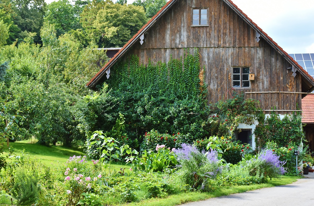 Start a Homestead: 9 Principles for Success