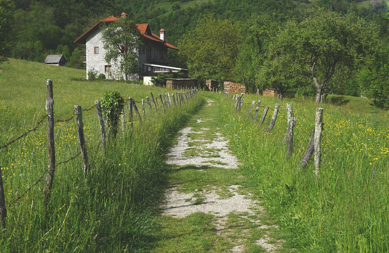 The Best Book on Country Living: Why You'll Love It