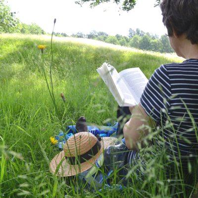 Reading Series for Farm Kids: My Top 3 Picks