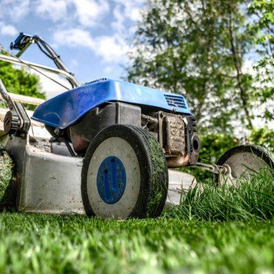 Free Mulch Near Me: Discover & Prepare Grass Clippings