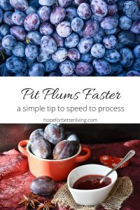 It takes time to prepare plums! Here's a simple tip that will have you pitting plums faster!