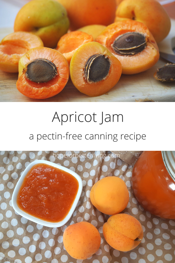 This apricot jam recipes has only 3 ingredients: apricots, honey and nutmeg! Make it now!