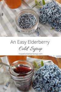 Add this easy to make, raw elderberry syrup to your natural medicine cabinet.