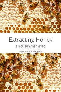 Curious about honey extraction? Here's a 6 minute video outlining the process!