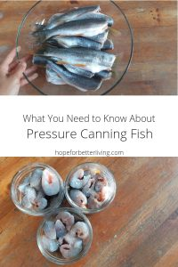 Have you ever wondering about pressure canning fish? Here's a basic recipe and tutorail that will walk you through the steps.
