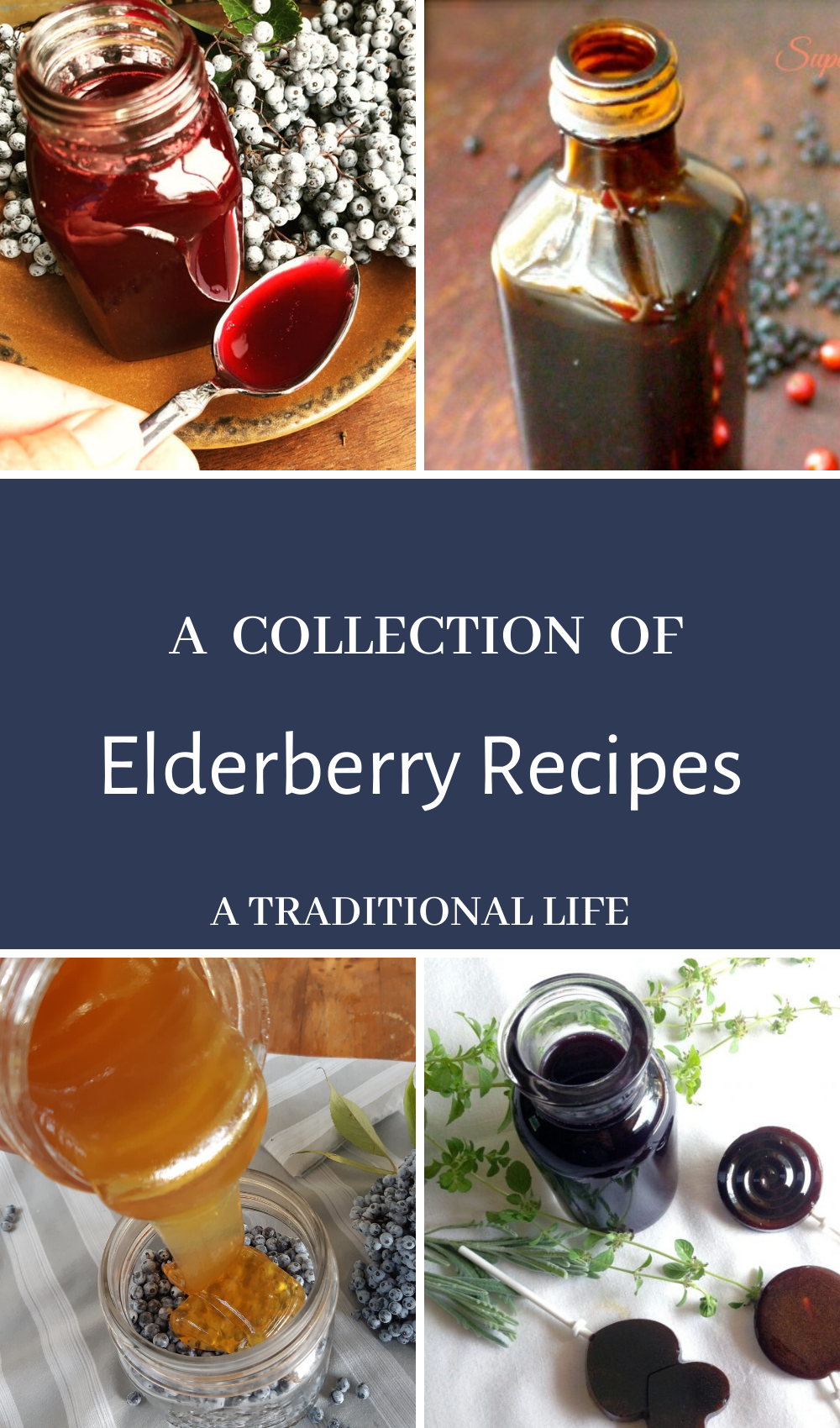 7 Elderberry recipes for your natural medicine cabinet