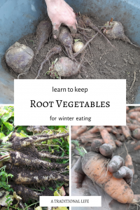 Store root vegetables