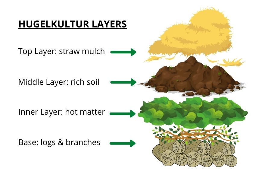 A graphic showing the four hugelkultur layers: wood, hot matter, growing soil and mulch