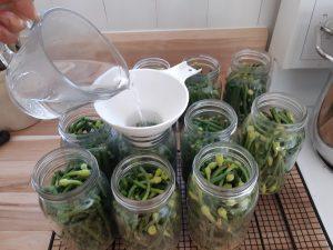 Adding pickling brine to garlic scapes