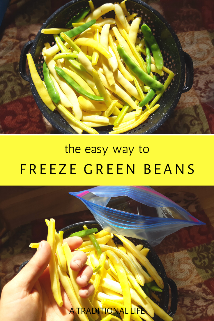 How to Freeze Fresh Green Beans
