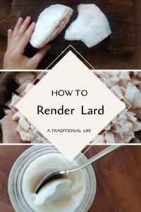 Learn how to render lard