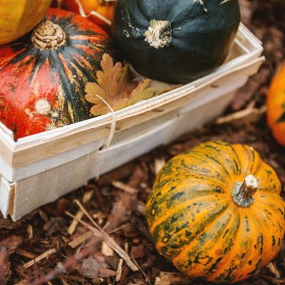 How to Prepare Winter Squash for Long Term Storage