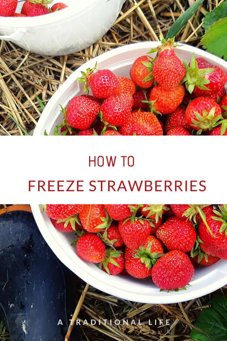 Freeze strawberries the easy way!