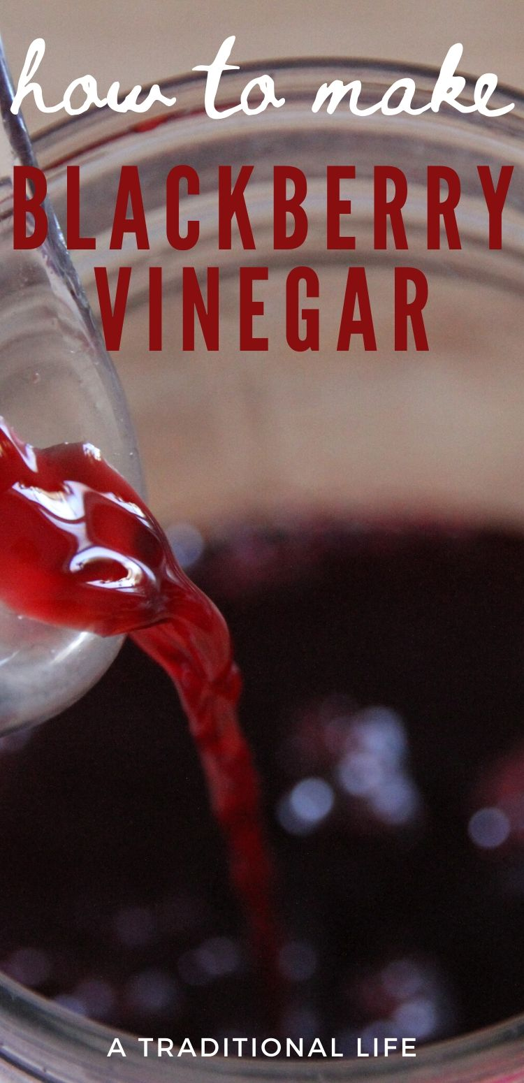 Use this DIY tutorial to make your own blackberry vinegar