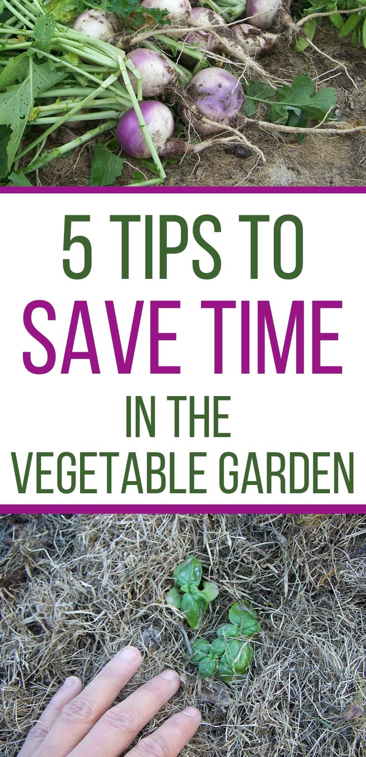 learn to save time in the garden with these tips