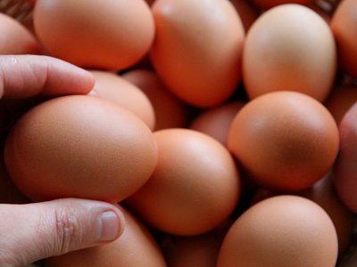 A basket of farm fresh eggs