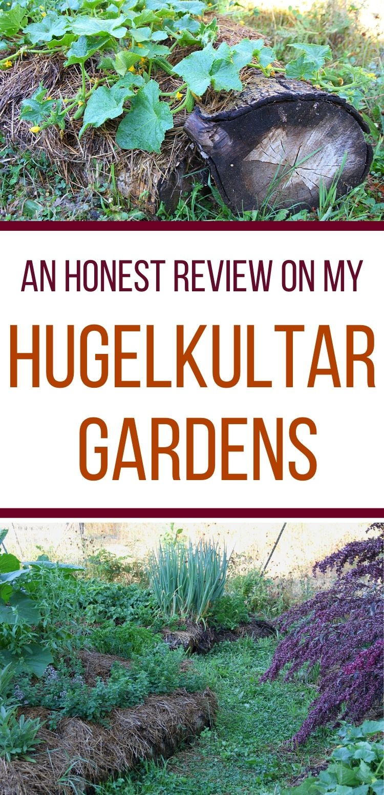 Hugelkultars are a wonderful way to created raised garden beds. Watch the video for a tour!