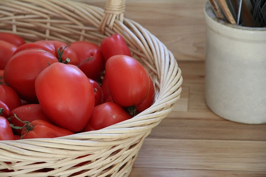 a basket of ripe red tomatoes sitting on the countertop