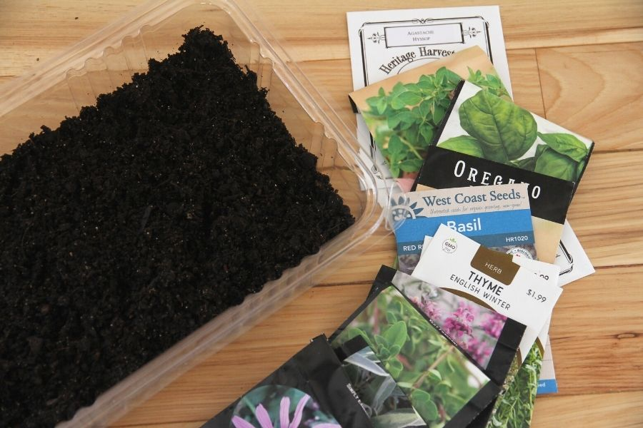 a tray of moist potting soil, ready for planting herb seeds