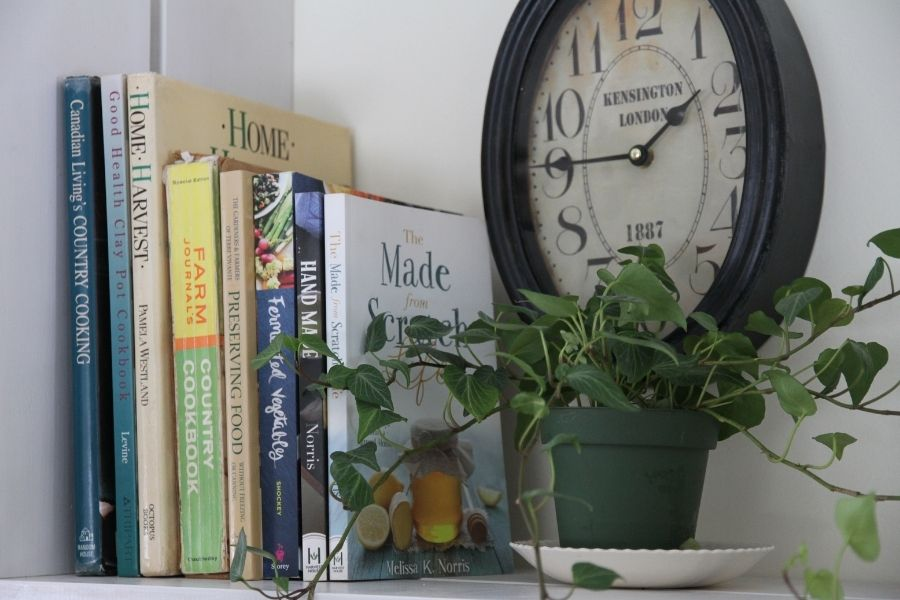 A pile of books, a plant and a clock signify the benefits of living without internet